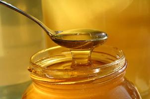 Gryczany, lipowy czy wielokwiatowy – który miód jest najlepszy?