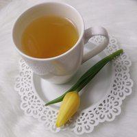 Czystek zamiast zielonej herbaty
