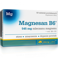 OLIMP MagneSan B6