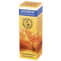 Anginbon