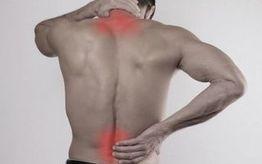 Najlepsze produkty na ból pleców