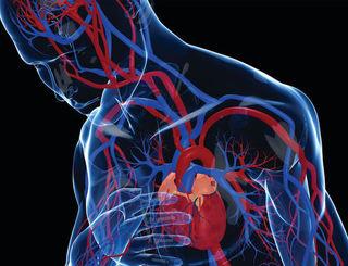 Najlepsze produkty na wzmocnienie serca